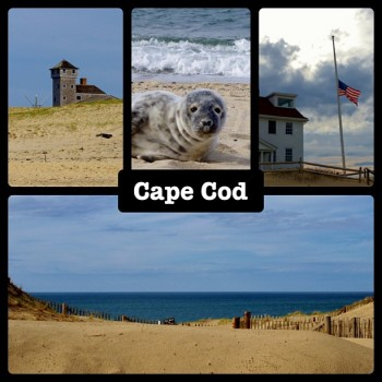 Race Point Beach - Cape Code, April 20, 2013