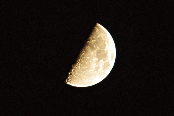 First Quarter Moon - 10/1/2014